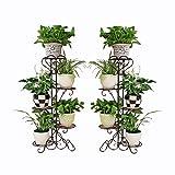 WBBHJ Zwei Eisen europäischen Massivholz Blume Stand günstig zu Verkaufen Schmiedeeisen Multi-Layer-Boden Balkon Blumentopf Rack Wohnzimmer Indoor hängen Orchidee grün Blume Stehen (Farbe : Brown)
