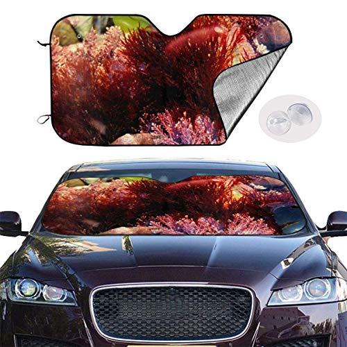VTIUA Parasol para Parabrisa,parasoles de Coche Auto Coral Weed Portable Universal Sunshade Keeps Vehicle Cooler for Car,SUV,Trucks,Minivan Automotive and Most Vehicle Sunshade (51 X 27 in)