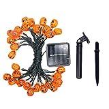 Masoness  LED Halloween Lichterketten Batteriebetriebene Lichter mit Fernbedienung,Halloween...