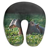 Walnut Cake Nackenhörnchen Memory Foam Neck Pillow,Roaring Hippo Travel U-Shaped Pillow Seitenschläferkissen