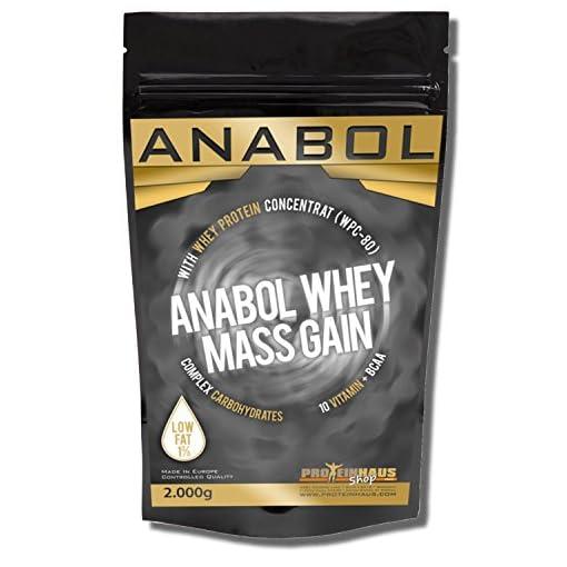 Anabol Whey Mass Gain