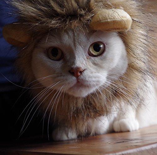 Haar Fake Kostüm (Niedliche Pet Löwe Haar Katze Kleidung Kleid für Halloween Weihnachten Ostern Festival Party Aktivität Löwe Mähne Perücke für Hunde und Katzen Kostüm waschbar von)