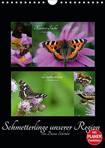Schmetterlinge unserer Region (Wandkalender 2019 DIN A4 hoch): Das perfekte Geschenk für jeden Schmetterlings-Liebhaber. (Familienplaner, 14 Seiten ) (CALVENDO Tiere)