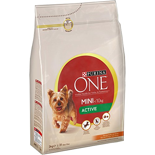 Purina ONE Mini Active Pienso Perro Adulto Pollo Arroz