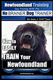 Newfoundland Training | Dog Training with the No BRAINER DogTRAINER ~ We Make it THAT Easy!: How to EASILY TRAIN Your Newfoundland