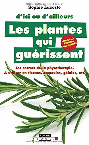 Les plantes qui guérissent : D'ici ou d'ailleurs