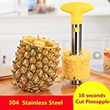 Stainless Steel Pineapple Corer Pineapple Slicer Pineapple Peeler - Best Reviews Guide