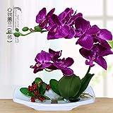 #8: VORCOOL Artificial Silk Table Flower Decoration Phalaenopsis Living Room Indoor Bonsai Set (Fuchsia)