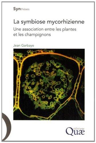 La symbiose mycorhizienne: Une association entre les plantes et les champignons.