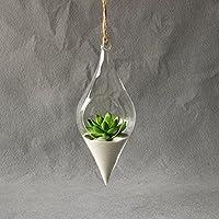 Kicode Jarrón de Vidrio Colgante Terrario Hidropónico Planta Flor Contenedor Transparente Oficina de Interior Creativa Decoración del hogar
