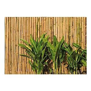 Papier peint 41 oF bAMBOO wALL papier peint à impression photo 400 x 280 cm bambou avec colle au mur, feuilles, fond en asie naturel, marron, feuilles de papier, favorable