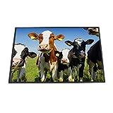 banjado - Design Fußmatte 70x50cm Türvorleger Rutschfest Haustür Schmutzfangmatte mit Motiv Kühe