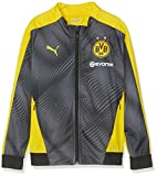 PUMA Kinder BVB League Stadium Jacket Jr with Evonik Trainingsjacke, Cyber Yellow Black, 152