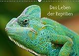 Das Leben der Reptilien (Wandkalender 2019 DIN A3 quer): Echsen, Schildköten, Schlangen aus aller Welt (Monatskalender, 14 Seiten ) (CALVENDO Tiere)