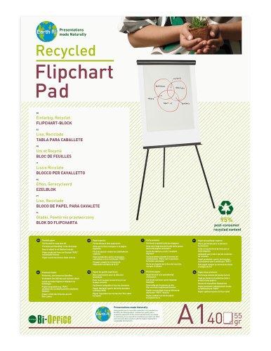 Bi-Office FL0111801 Earth Lot de 5 Blocs de papier recyclé lisse pour Chevalet de Conférence A1 40 feuilles 55 g/m²