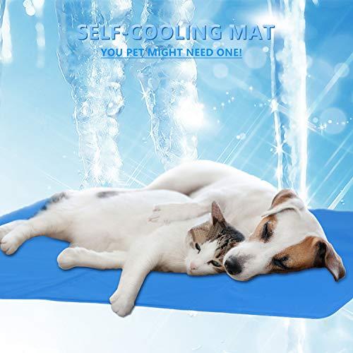 Zoom IMG-1 cadosoigh tappetino per cane rinfrescante