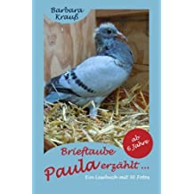 Brieftaube Paula erzählt