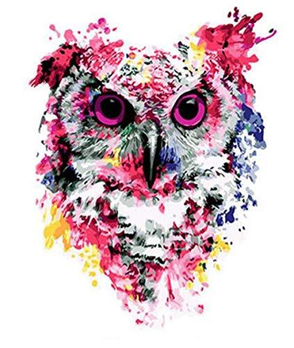 HNZZLC Digitale Malerei DIY Leinen Leinwand Set Schlafzimmer Gast Restaurant Büro Dekoration Erwachsene Zeichnung Acryl Rote Augen Farbige Eule 40X50 cm