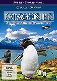 Patagonien - Auf den Spuren von Charles Darwin: Von Camarones bis Darwins Rock