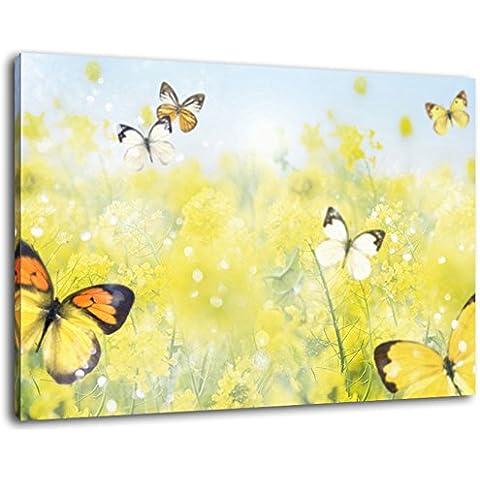 Farfalle sul prato del fiore Formato: 120x80 cm pittura coperto su tela, grandi immagini XXL completamente finiti e incorniciate con barella, stampa arte murale con telaio, più conveniente che la pittura o l'immagine, senza manifesti o