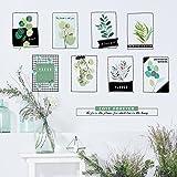 HCCY Die schlichten skandinavischen Stil Wandaufkleber kunst Frische Pflanzen sofa Wand Poster 75*100 cm