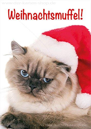 'Divertenti A6animale cartolina, biglietto di Natale gatto con cappello di Babbo Natale Muffel di Natale. In Set da pezzi
