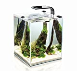 AquaEl Shrimp Set 2 30 Liter schwarz