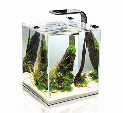 Aquarium Aquael Shrimpset 19 Litres Black To Reduce Body Weight And Prolong Life Fish & Aquariums