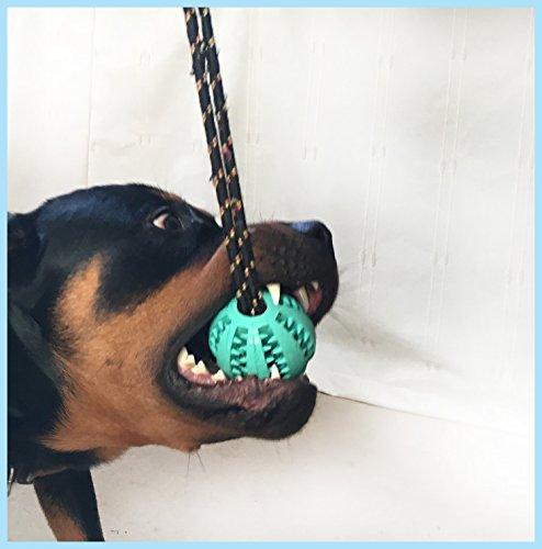 Super Robust Zahnreinigung, anregend, Leckerli-Spender für Hunde Spielzeug. Aus langlebigem Sicher Gummi, kommt mit eine Abnehmbare Seil zu Ein Interaktives Tug Spielzeug für Ihren Hund oder Welpen, als von Marley der Rottweiler