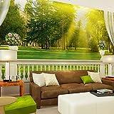 SHENCHI Floral Art Decó 3D Fondo de pantalla Para el hogar Contemporáneo Revestimiento de pared , Lienzo Material adhesiva requerida Mural , , xxl