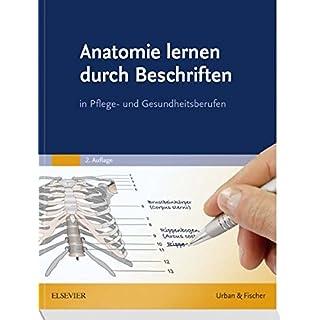 Anatomie lernen durch Beschriften: in Pflege- und Gesundheitsberufen