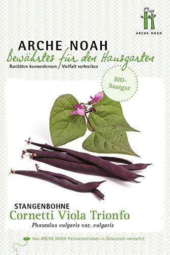 Arche Noah 6667 Stangenbohne Cornetti Viola Trionfo (Bio-Stangenbohnesamen)