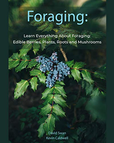 Foraging: Learn Everything About Foraging: Edible Berries, Plants, Roots and Mushrooms Descargar PDF