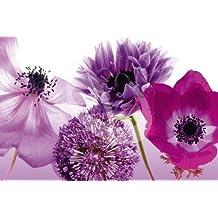 Empire 375360 Blumen - Póster de flores moradas (91,5 x 61 cm)