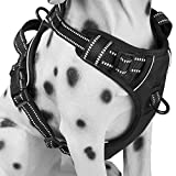 No Pull Dog Harness Review and Comparison