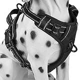 Alimao Brustgeschirre für Hunde Oxford-Material, Einfach zu Handhaben, Solide Verschluss, Griff und Leine. Perfekt für Assistenz, Training, Tägliches Training Schwarz (S)