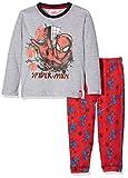 DC Comic Spiderman Spider Web Ensemble de Pyjama, Gris (Lgrey 19-1763TC), 2-3 Ans Garçon