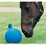 """""""Happy Horse"""" equine play ball"""