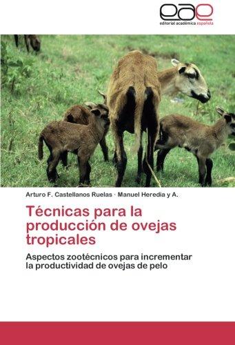 Técnicas para la producción de ovejas tropicales por Castellanos Ruelas Arturo F.