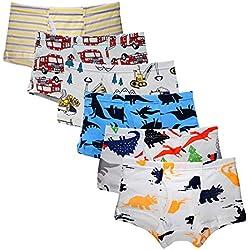 Kidear sous-vêtements Souple d'enfants en Coton Culotte de Série d'enfants Caleçon Assortis pour Petit Garçons (Lot de 6) (Style4, 6-7 Ans)