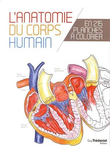 L'anatomie du corps humain en 215 planches à colorier