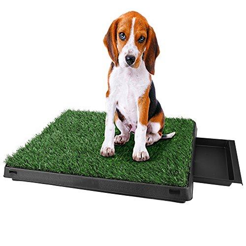 mymotto Umweltfeundlich Hundetoilette Haustier Welpen Toiletten Training Matte aus ABS 63 x 50 x 7 cm