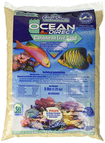 Carib Sea acs00905 Ocean Direct Natur Live Sand für Aquarium, 5-Pound (Reef Sand Live)
