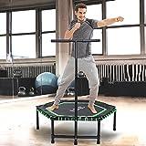 ISE Fitness Trampolin,Trampolin für Jumping Fitness Ø 120 cm höhenverstellbarer Haltegriff(113.5-134.5cm),leise Gummiseilfederung,Nutzergewicht bis 120kg,TÜV-Geprüft SY-1105-GR