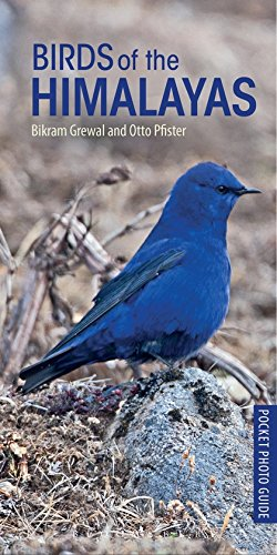 Birds of the Himalayas (Pocket Photo Guides)
