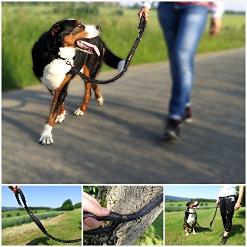 Premium Jogging-Leine | Sichere Metall-Komponenten | Umweltfreundliche Verpackung | Softer Neopren-Bauchgurt | 2 Gratis Booklets | Pets'nDogs -