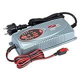 Erhaltungsladegerät für Auto und LKW BX-1 12V/24V