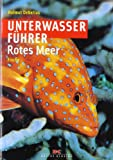 Unterwasserführer Rotes Meer - Fische