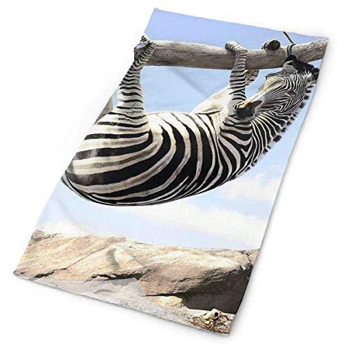 Headbands Funny Zebra Headwear Bandana Sweatband Gaiter Head Wrap Mask Neck Outdoor Scarf