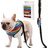 Rantow Hundegeschirr mit Leine, Regenbogenfarben, strapazierfähig, für kleine, mittelgroße und große Hunde, inklusive Müllbeutel aus Kunststoff